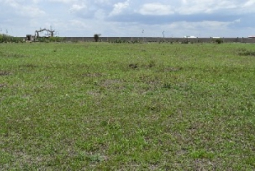 KIOTA VILLE PLOTS FOR SALE